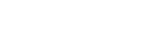 brandbot-logo-white-w500h150
