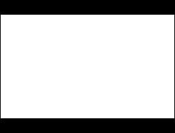 evo-logo-white-w250h190