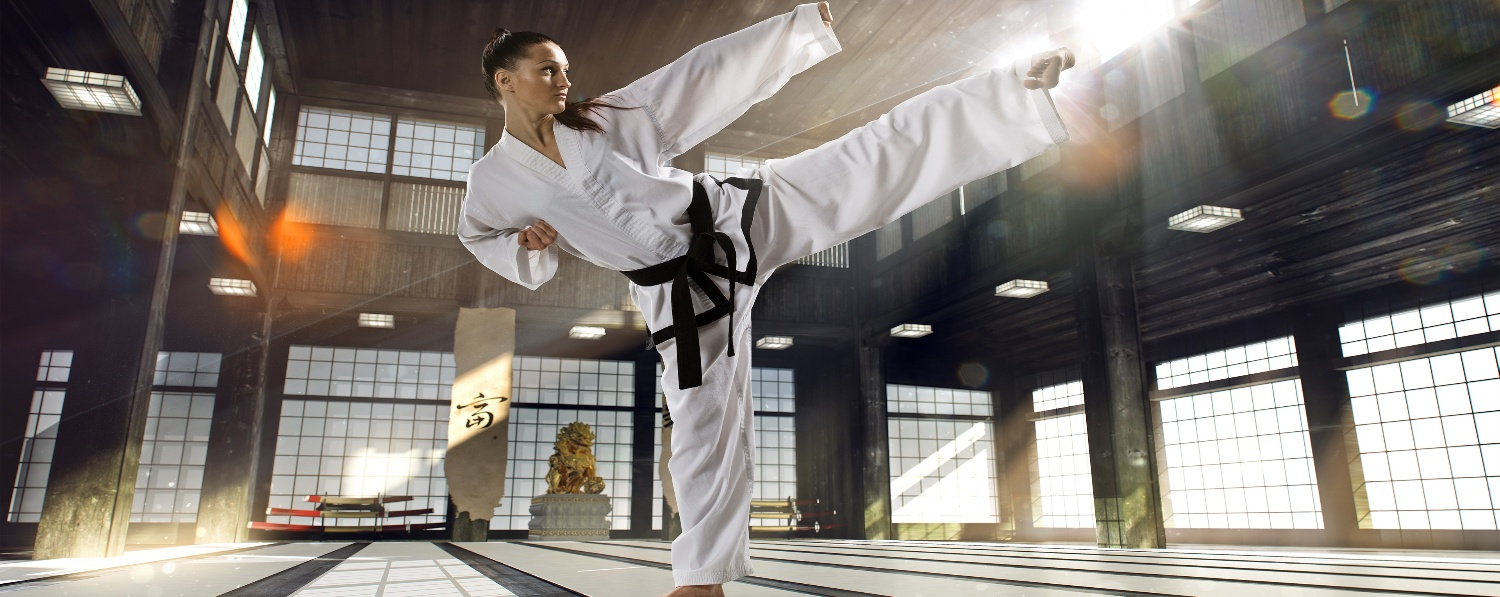 martial arts studio management software