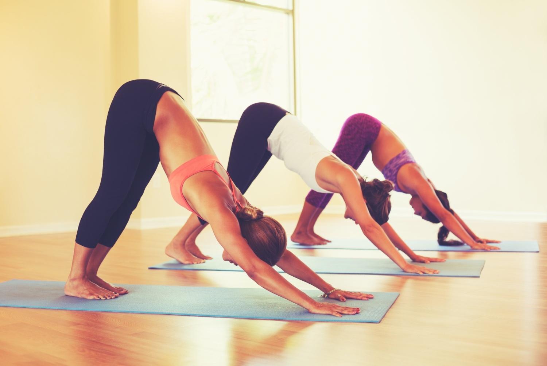 yoga studio management software