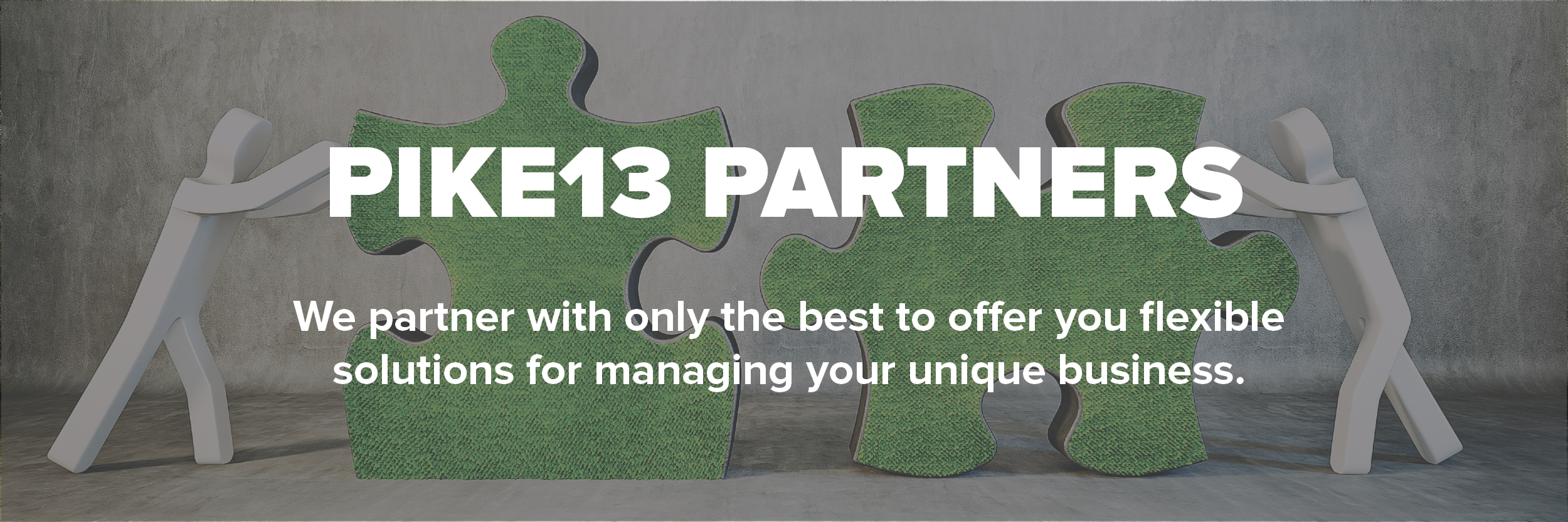 partners-email-banner